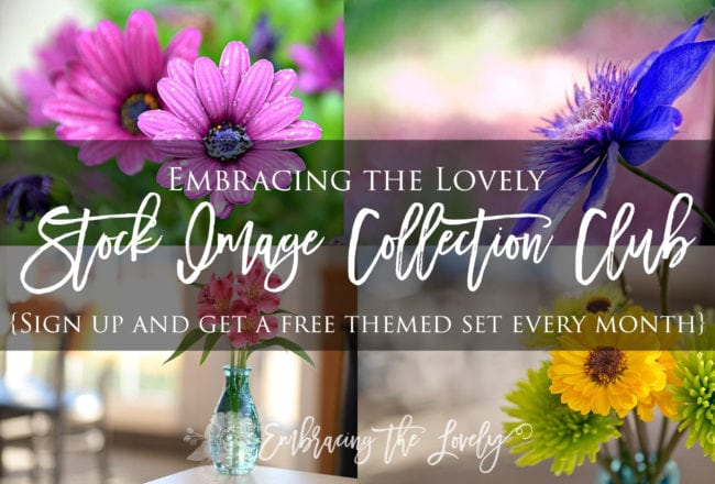 Are you looking for new graphics? Welcome to the Embracing the Lovely Stock Image Collection Club!