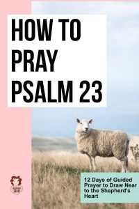 How to Pray Psalm 23