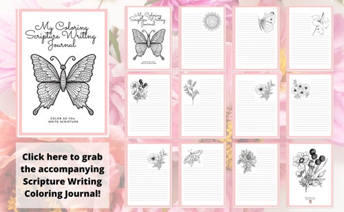 My Coloring Scripture Writing Journal